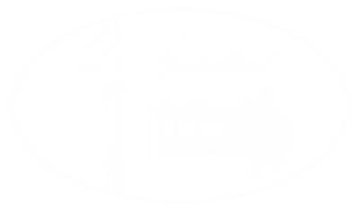 DS logo wit